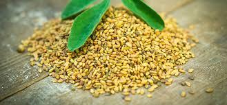 health-benefits-of-methi-seeds